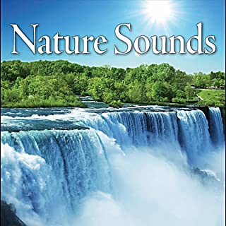 Mother Natures Sounds – Woodland Forest Ambience, Native Flute Lullaby, Chill Out New Age Music
