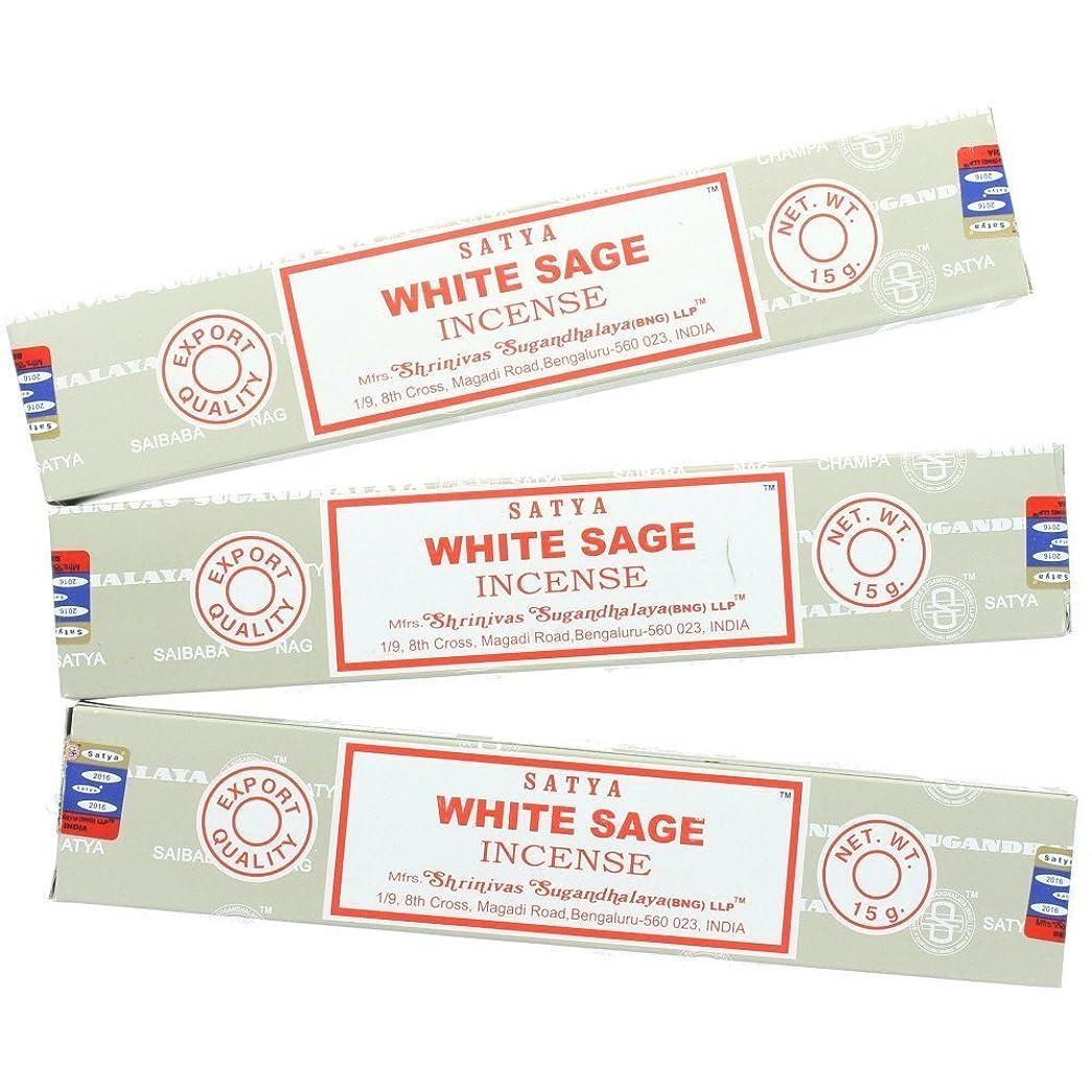 上昇更新する終わりSatya Nag ChampaホワイトセージIncense Sticks?–?3パック