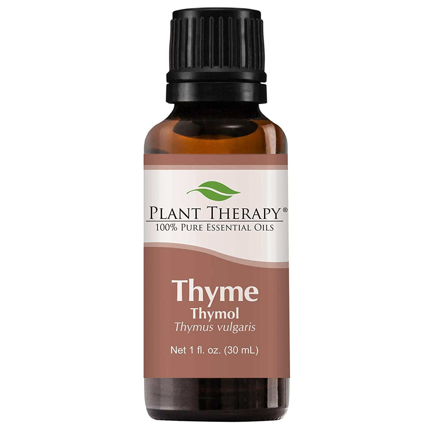 失礼決めます鉄Plant Therapy Thyme Thymol Essential Oil. 100% Pure, Undiluted, Therapeutic Grade. 30 ml (1 oz). by Plant Therapy Essential Oils