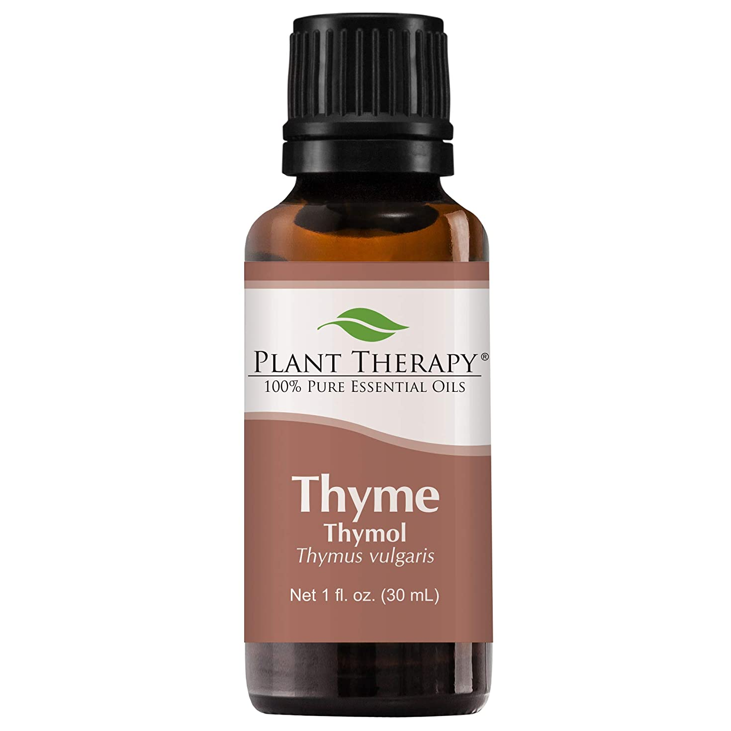 してはいけませんアマゾンジャングルレプリカPlant Therapy Thyme Thymol Essential Oil. 100% Pure, Undiluted, Therapeutic Grade. 30 ml (1 oz). by Plant Therapy Essential Oils