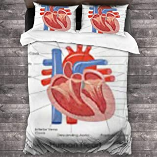 ZZguowuque 3 Pieces Bedding Sets Queen Quilt Size 86x70 Inch, 2 Pieces Pillowcase 20x30 Inch,100% Microfiber Anatomical of Diagram Human Heart Anatomy Body Cardiac Muscle Organ