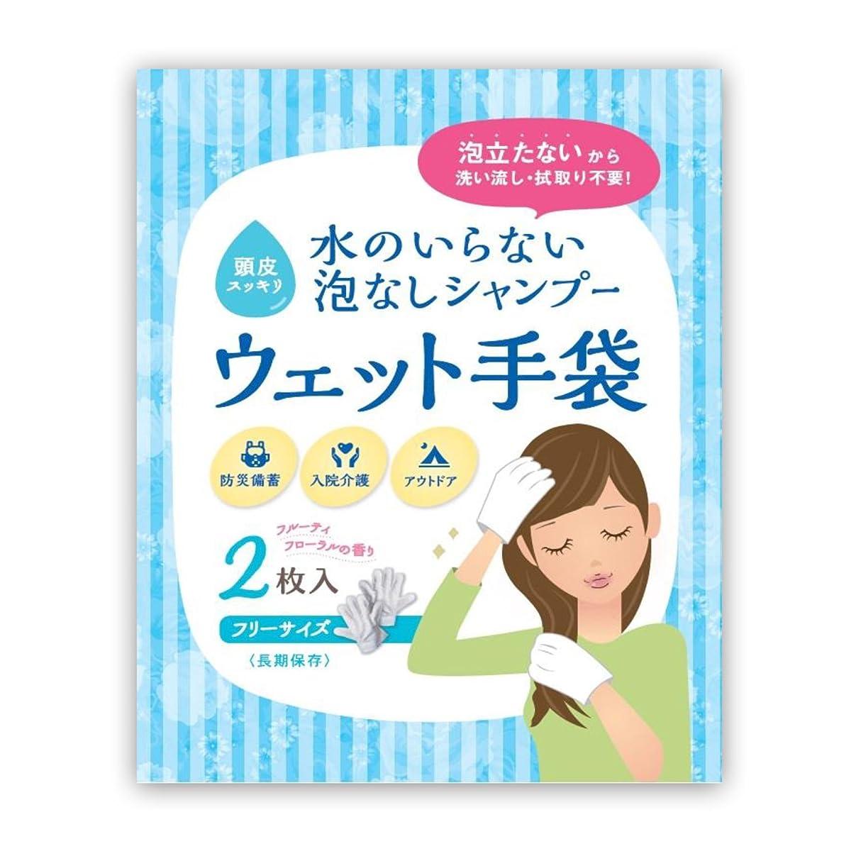 確保するビルマ雹水のいらない泡なしシャンプー ウェット手袋(2枚入)