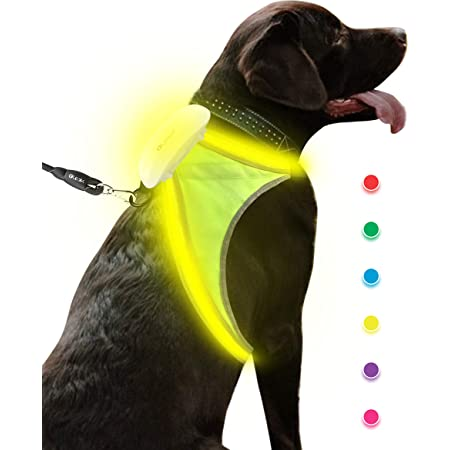 Olook LED USB Rechargeable Removable Reflective Dog Harness Illuminated Adjustable Lightweight Dog Vest with Multicolored Fiber Optics for Small Medium Large Dogs