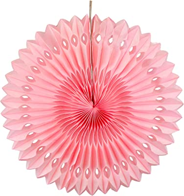 SKYLANTERN Rosace Papier 30 cm Rose Pâle