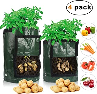 Garden Potato Grow Bags Potato Planter Bags with Flap and Handles Plant Grow Bags for Planting Vegetables Tomato and Flower (Green 2 Pack 10 Gallon and 2 Pack 7 Gallon)