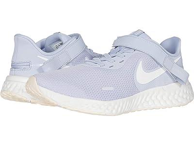 Nike Flyease Revolution 5 (Ghost/Summit White/World Indigo) Women