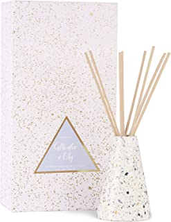 Paddywax Confetti Collection Reed Diffuser Set, 4 oz, Salt Water + Lily