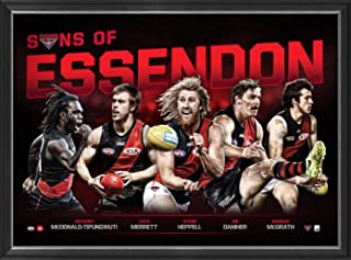 Sport Entertainment Products Essendon Football Club 'Sons of Essendon'