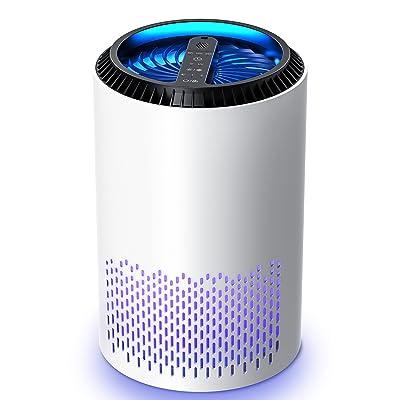 Kloudi HEPA Air Purifier Air Filter with Air Pretreatment System