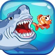 Crazy Shark Run