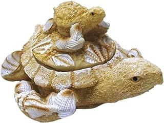 1 X Nautical Coastal Sea Turtle with Baby Sand Seashell Resin Trinket Box