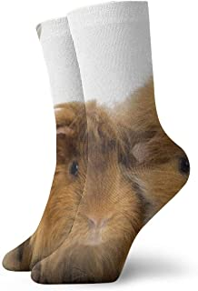 WEEDKEYCAT Rabbit and Guinea Pigs Adult Short Socks Cotton Cozy Socks for Mens Womens Yoga Hiking Cycling Running Soccer Sports