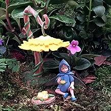 Flower Fairies Secret Garden - Scilla Fairy & Accessories…