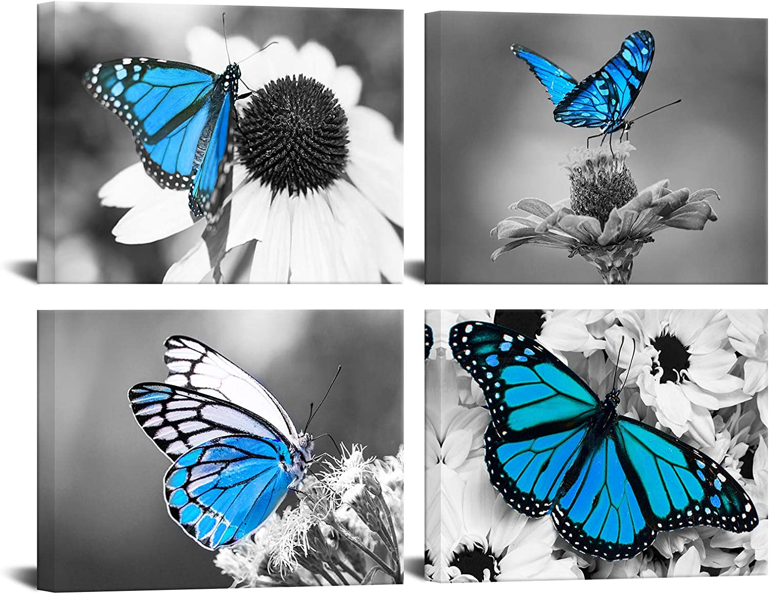 Biuteawal sold out Flower Wall Art Blue Floral Butterfly on Picture Daisy Ranking TOP17
