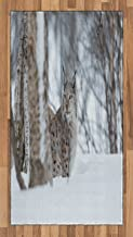 Ambesonne Animal Area Rug, European Lynx Snowy Cold Forest Norway Nordic Country Wildlife Apex Predator, Flat Woven Accent Rug for Living Room Bedroom Dining Room, 2.6' x 5', Pale Brown White