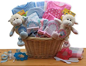 new baby gift baskets for twins