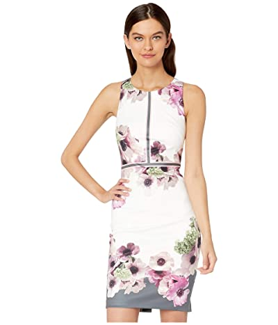 Ted Baker Nanina Neopolitan Buckle Detail Dress (Light Grey) Women