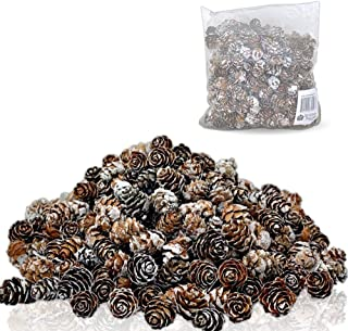 Best bulk pine cones Reviews