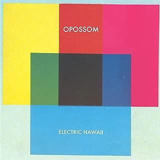 Electric Hawaii