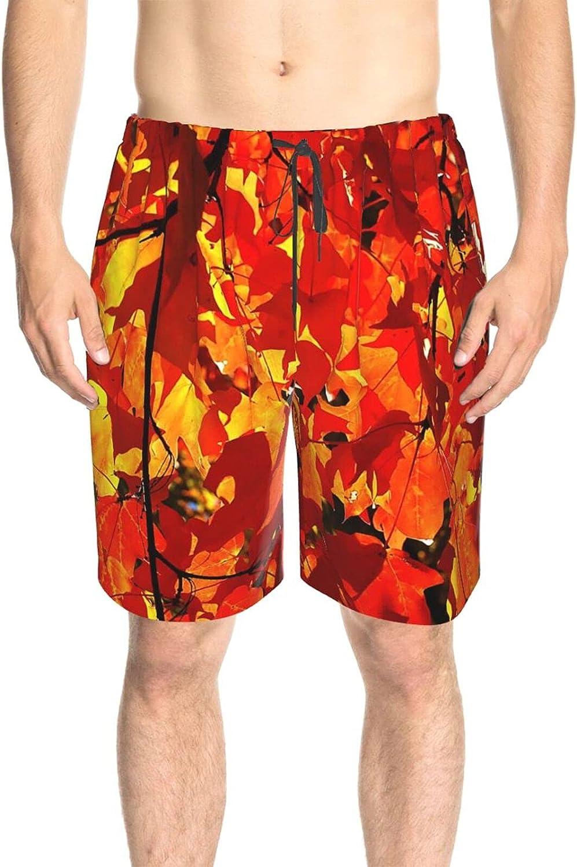 JINJUELS Mens Swim Trunks Fall Leaves Beachwear Board Shorts Fast Dry Fashion Swimming Trunks with Lining
