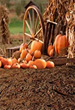 AOFOTO 5x7ft Fall Farm Hay and Pumpkins Background Vintage Thanksgiving Day Photography Backdrop Autumn Harvest Barn Old Wheel Hub Wood Crate Kid Baby Boy Girl Portrait Photo Studio Props Wallpaper
