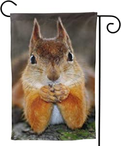 WAZHIJIA Funny Thinking Squirrel Garden Flag Animal House Flag Vertical Double Sided Yard Outdoor Decor Party Gift 12.5 X 18 Inch