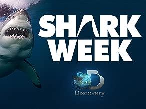 Shark Week Season 2011
