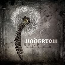 undertow reap the storm