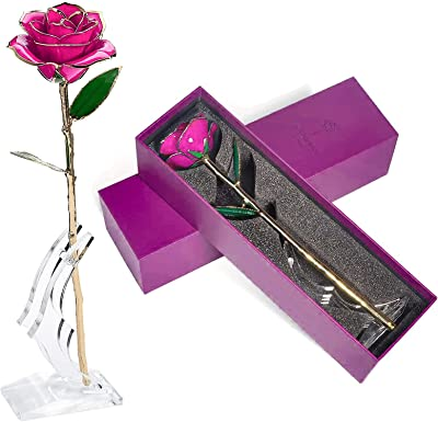 Wild Roses Seeds Kit ❅ these flowers life virtually forever and are always beautiful