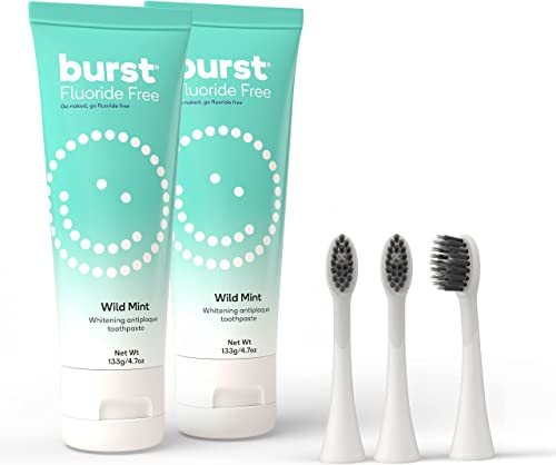 high quality BURST Fluoride Free Toothpaste for Teeth Whitening with BURST high quality Replacement Electric Toothbrush Heads, sale White [Packaging May Vary] online