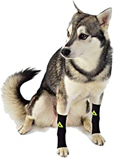 (PAIR) 2 x DOG Canine Pet Compression Wear Sleeve Foreleg Hind Leg By MyProSupports (Black, Small)