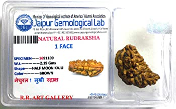 AwakenYourKundalini's Natural Rudraksha Beads (1,2,3,4,5,6,7,8,9,10,11,12,13,14 Faced) Original Rudraksha Beads Himalayan Origin Nepal Collections - Lab Certified - US Seller (1 Mukhi Faced)