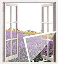 Wasbaar raamgaas verwijderbaar met plakband, balkonraambescherming voor kat, frisse lucht, anti-muggen, op maat gesneden, ...