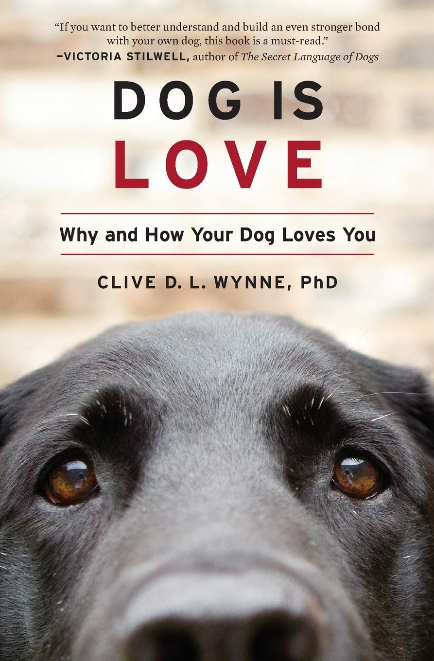 Download Dog Is Love: Why And How Your Dog Loves You 