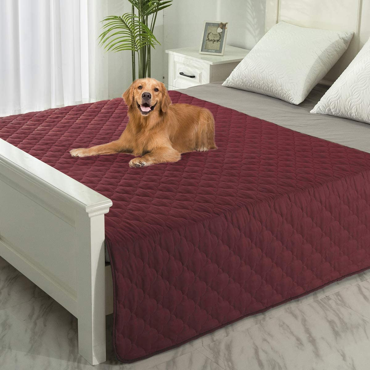 Chicago Mall Max 58% OFF SPXTEX Dog Bed Covers Rugs Puppy Washable Pee Pet Pads