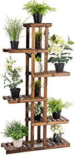 Best orchid plant stand Reviews