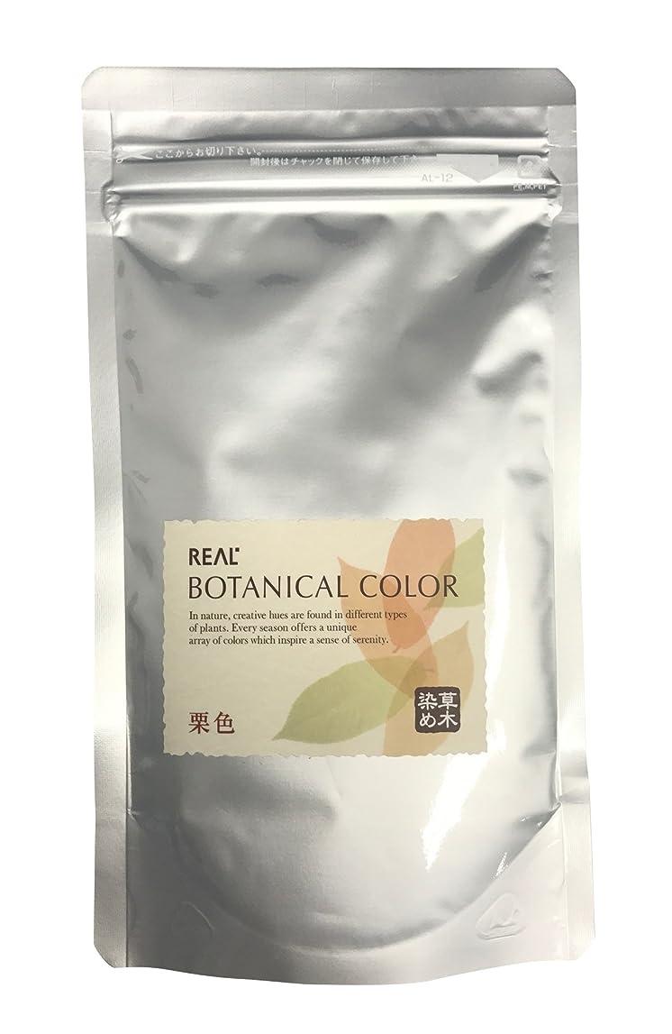意志前部事実リアル化学 ボタニカルカラー 栗色 100g