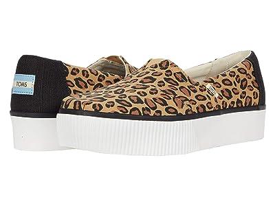 TOMS Venice Collection Alpargata Boardwalk (Leopard) Women