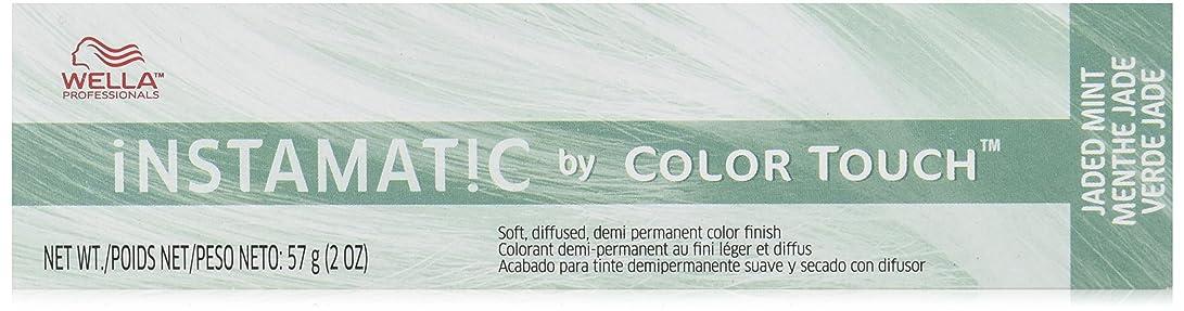 排出霧深いブルWella インスタマチックヘアカラー、2オンス うんざりミント