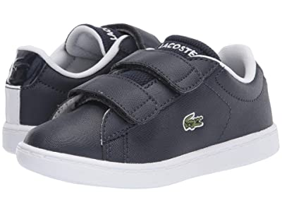 Lacoste Kids Carnaby Evo Strap 120 1 SUI (Toddler/Little Kid) (Navy/White) Kid