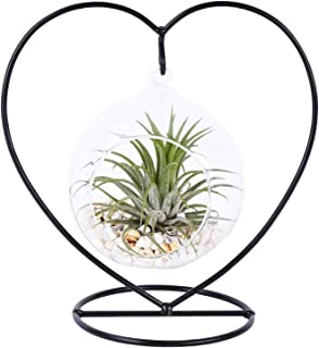 AUTOARK Glass Vase Plant Terrarium with Black Metal Stand,Ornament Display Stand,Office Desktop Potted Stand,Home & Office...