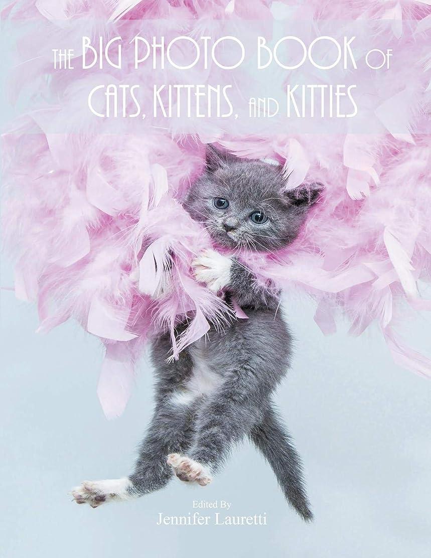 アナロジーピーブフェリーThe Big Photo Book of Cats, Kittens, and Kitties: Over 150 Super Size High Quality Photos