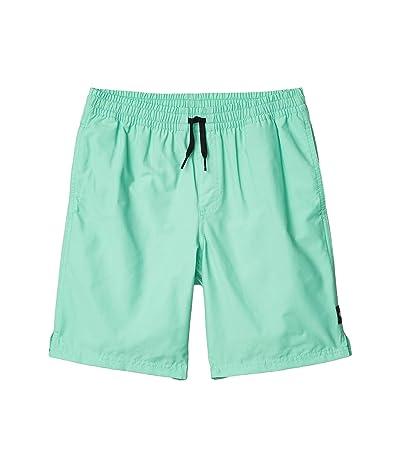 Vans Kids Primary Volley II Shorts (Big Kids) (Dusty Jade Green) Boy