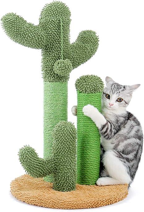 Scratching Post Cactus