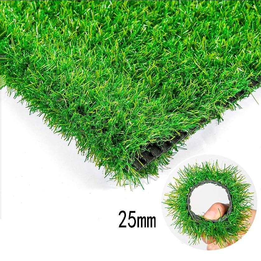 砂聴覚はねかけるXEWNEG 屋外の人工芝、25mmの山の高さ、暗号化された緑のプラスチック合成カーペットマット、庭のバルコニーの壁の装飾に適し、幅2m (Size : 2x6m)