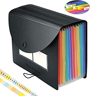 Expanding File Folder/BluePower 12 Pockets Accordian File Organizer/Portable Expandable Plastic Filing Box, Accordion Bill/Paper/Document/Receipt Organizer Folders with Colored Tabs(A4/Letter Size)