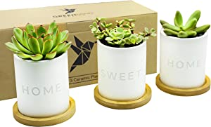 Home Sweet Home Ceramic Pots - 3.5 inch White Mini Succulent Cactus Planter Pot w/ Bamboo Tray & Drainage Hole - GreenMind Design Laser Engraved Set of 3 - Home Office Gift - Plants not Included