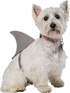Best cat shark fin Reviews