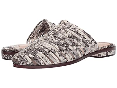 Cecelia New York Gloria (Black/White Natural Snake) Women