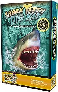 Shark Tooth Dig Kit – Dig Up 3 Real Shark Teeth Fossils!